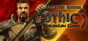Купить Gothic III: Forsaken Gods Enhanced Edition