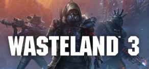Купить Wasteland 3