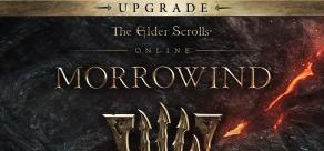 Купить The Elder Scrolls Online - Morrowind (Bethesda). The Elder Scrolls Online - Morrowind Upgrade (Bethesda)