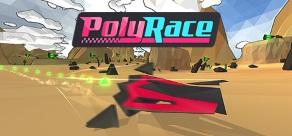 Купить PolyRace